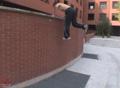 tic_tac_para_salto_de_gato